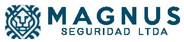 Magnus Seguridad